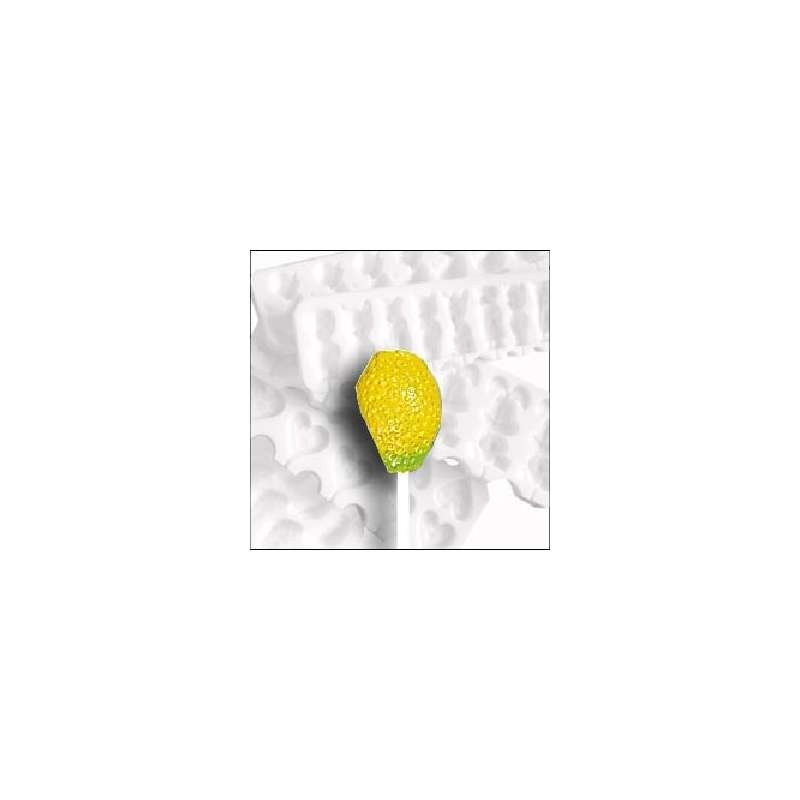 Moule silicone empreinte feuille fougere 170x30mm