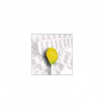 Silicone mold lollipops 12 lemons