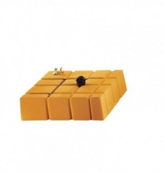 Molds for dessertx10 -Rectangle squared 160x160x45mm