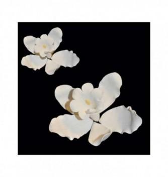 Gumpaste Flowers - White Orchid diam.80mm