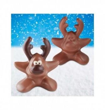 Moule Chocolat Noël Etoile Rennes