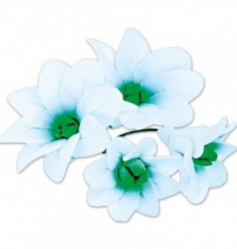 Gumpaste Flowers - White & Green Nenuphar
