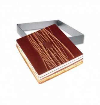 Square Stainless Steel Frame Entremet 20x20x3.5cm
