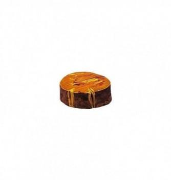 Moule Thermoformé pour Chocolat Souche