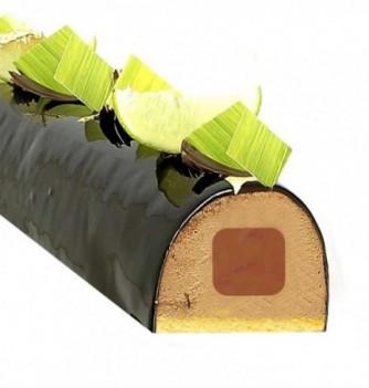 Moule Silicone pour Insert Gâteau - Carré - 300x45x27mm