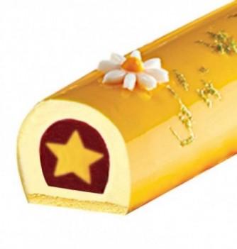 Moule Silicone pour Insert Gâteau - Etoile - 322x59x33mm