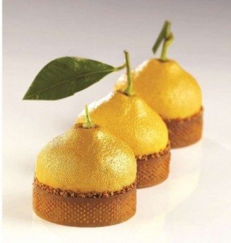 Moule Cedric Grolet Pavoni Tartelette Citron