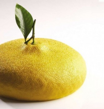 Moule Gâteau Cédric Grolet Citron Ø 180mm ht.70mm 1215ml