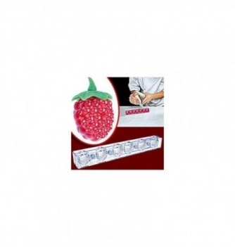 Magnetic 3D chocolate mold raspberry 6pcs
