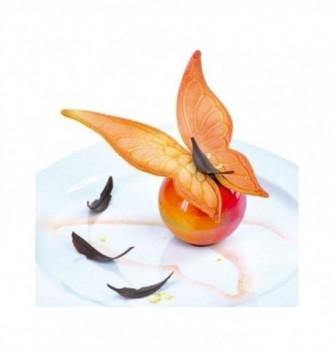 Moule Empreinte Silicone Aile Fine de Papillon Petit Modèle