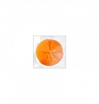 Silicone Mold - Orange