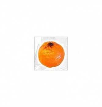 Moule Silicone Mandarine 65x60mm