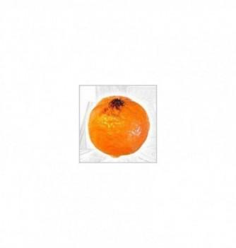 Silicone Mold - Mandarin