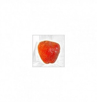 Moule Silicone Fraise 60x45mm