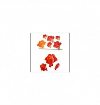 Moule Silicone Roses 55, 35, 30mm