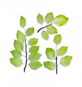 6 bunches of gumpaste leaves